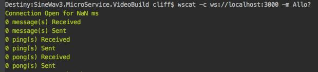 wscat-fail